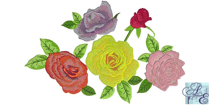 Rose Cluster B7122333